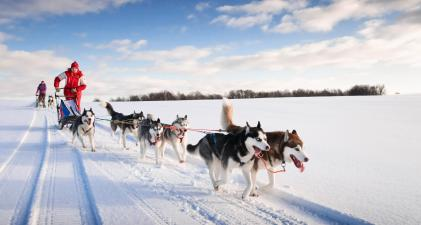 Guided Lapland tours