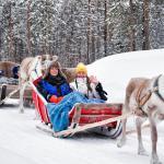 Reindeer farm visit and safari