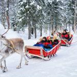 Rovaniemi group tours