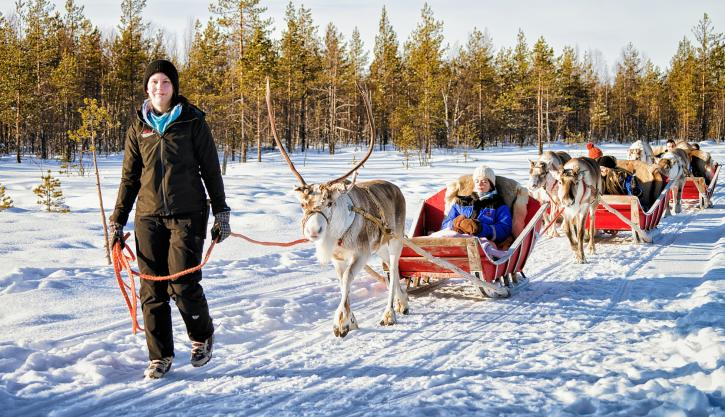 Lapland guided tours